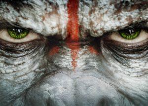 planet-apes-contest-video